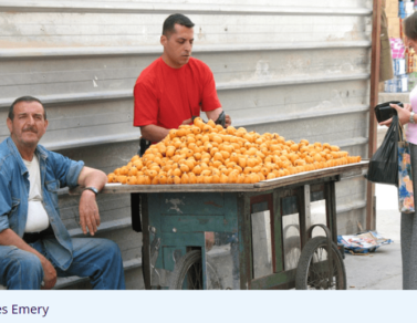 ILO Projects in Occupied Palestine Territory